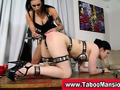 Brunette tied whore gets her butt played by lez domina in hd